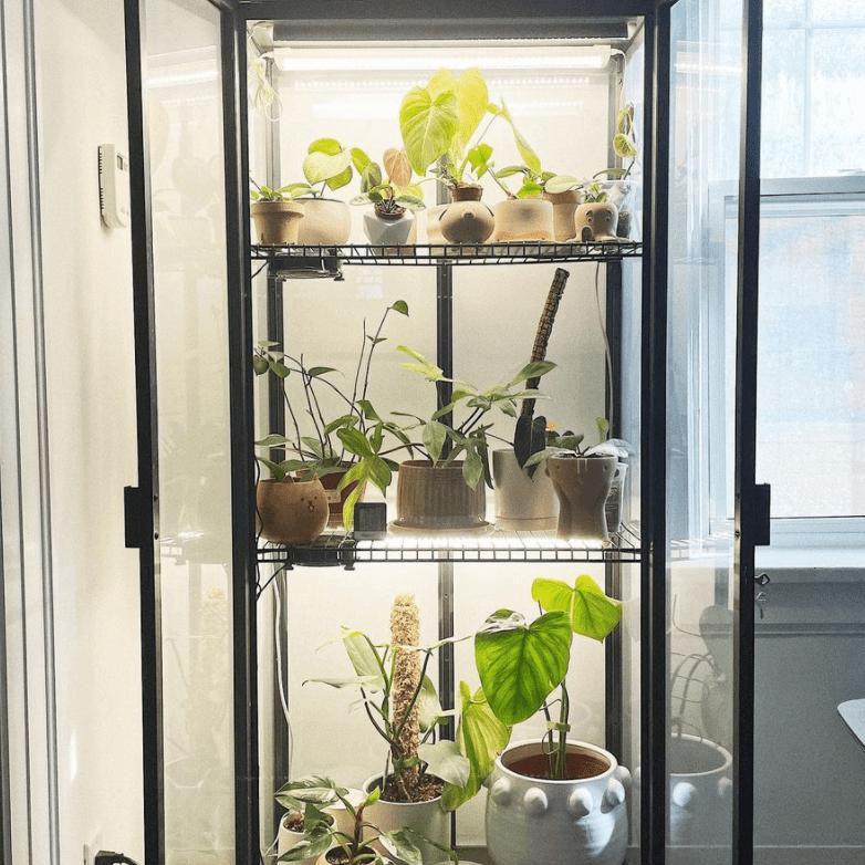 IKEA hack DIY greenhouse
