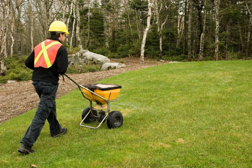 Lawn care working spreading fertilizer