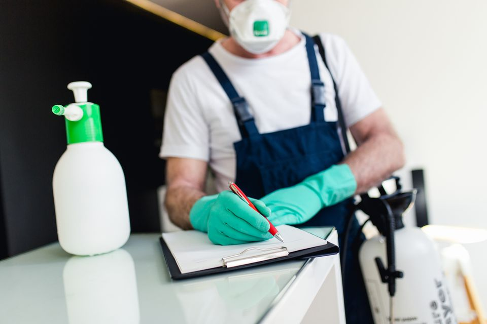 Pest control exterminator preparing treatment plan