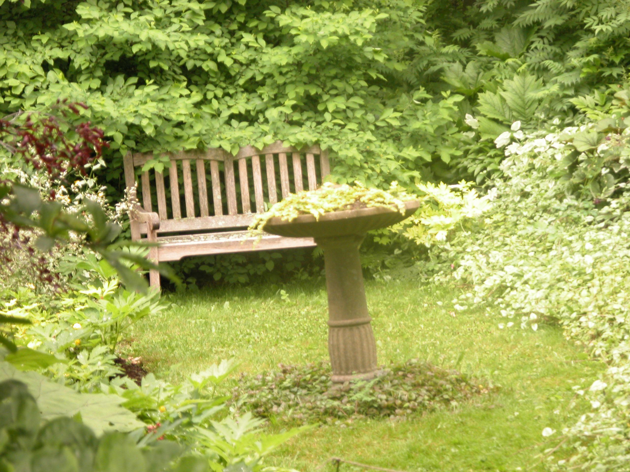 Rincón sombreado en el jardín para sentarse
