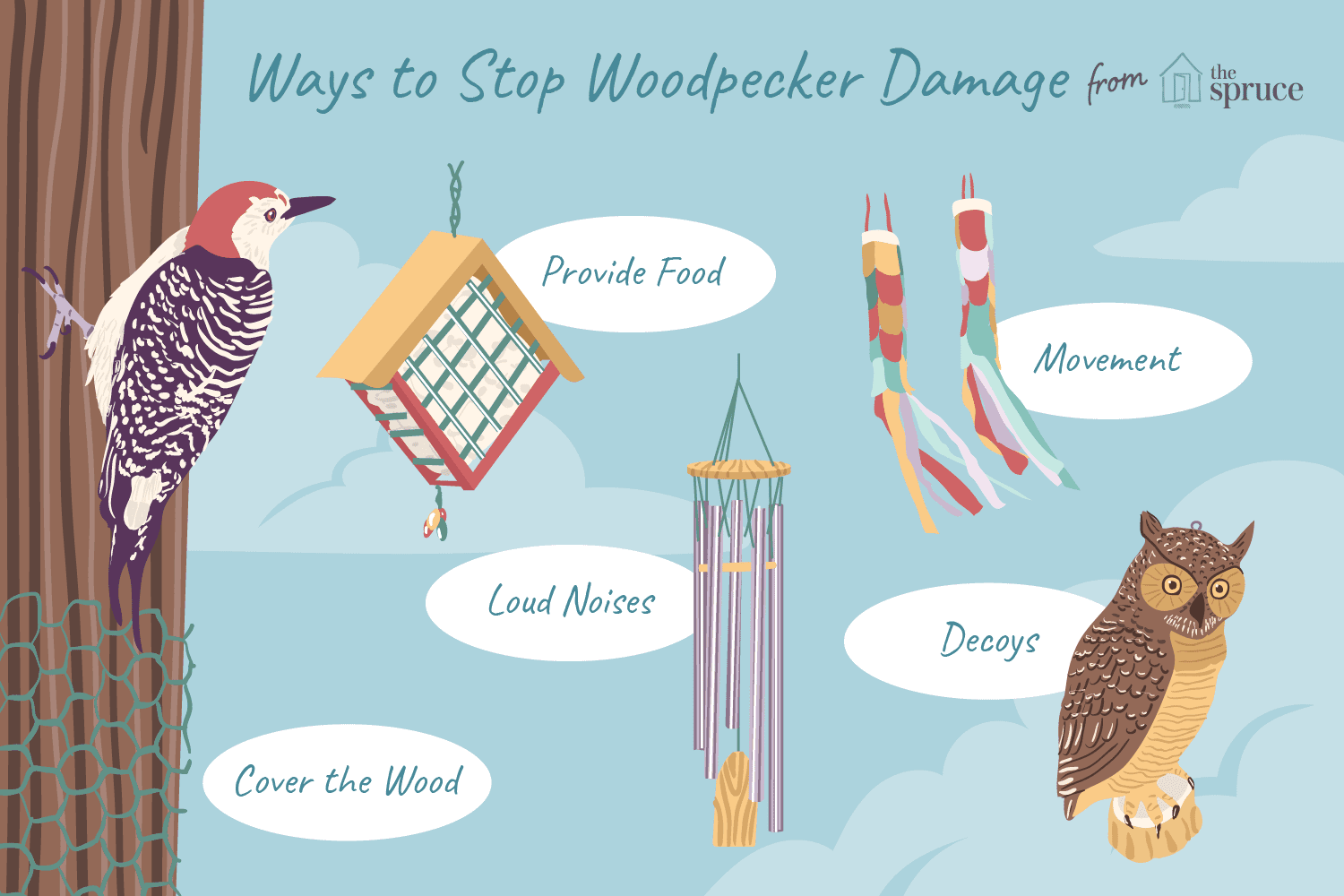 Remove Woodpeckers Without Hurting Birds
