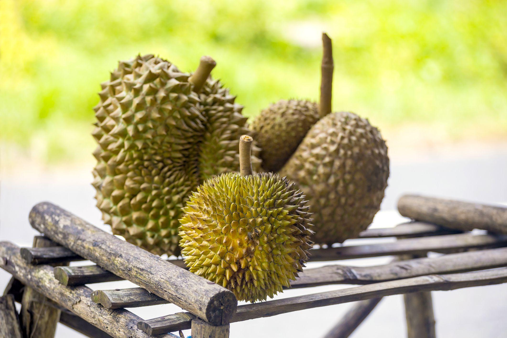 Durian Getty 5a1b0d1a89eacc ef6b