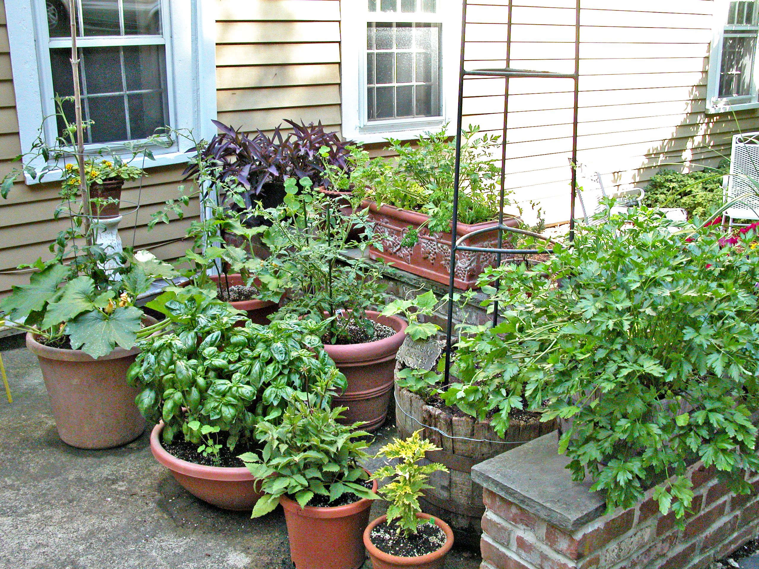 Clustered Containers