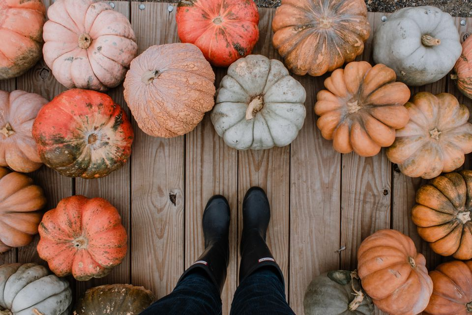 Person in black boots standing amid colorful pumpkins