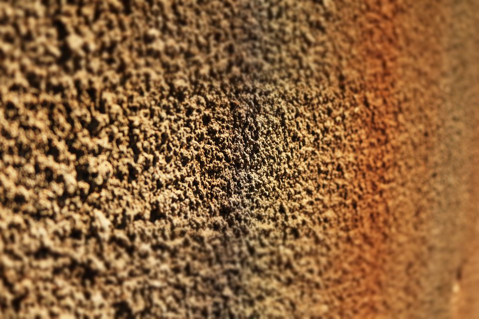 Close-up of a textured wall