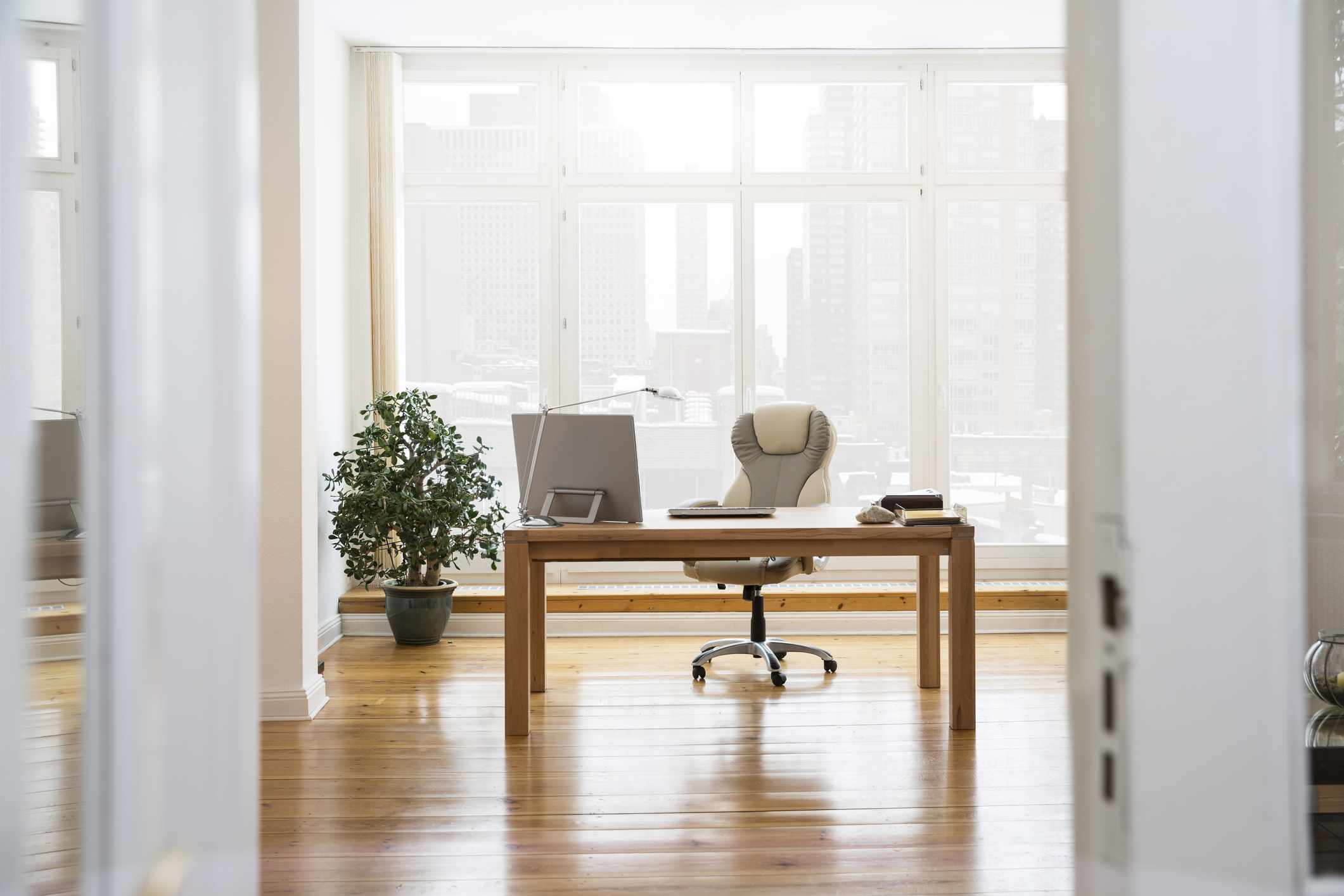 Spacious office with wood desk and plant