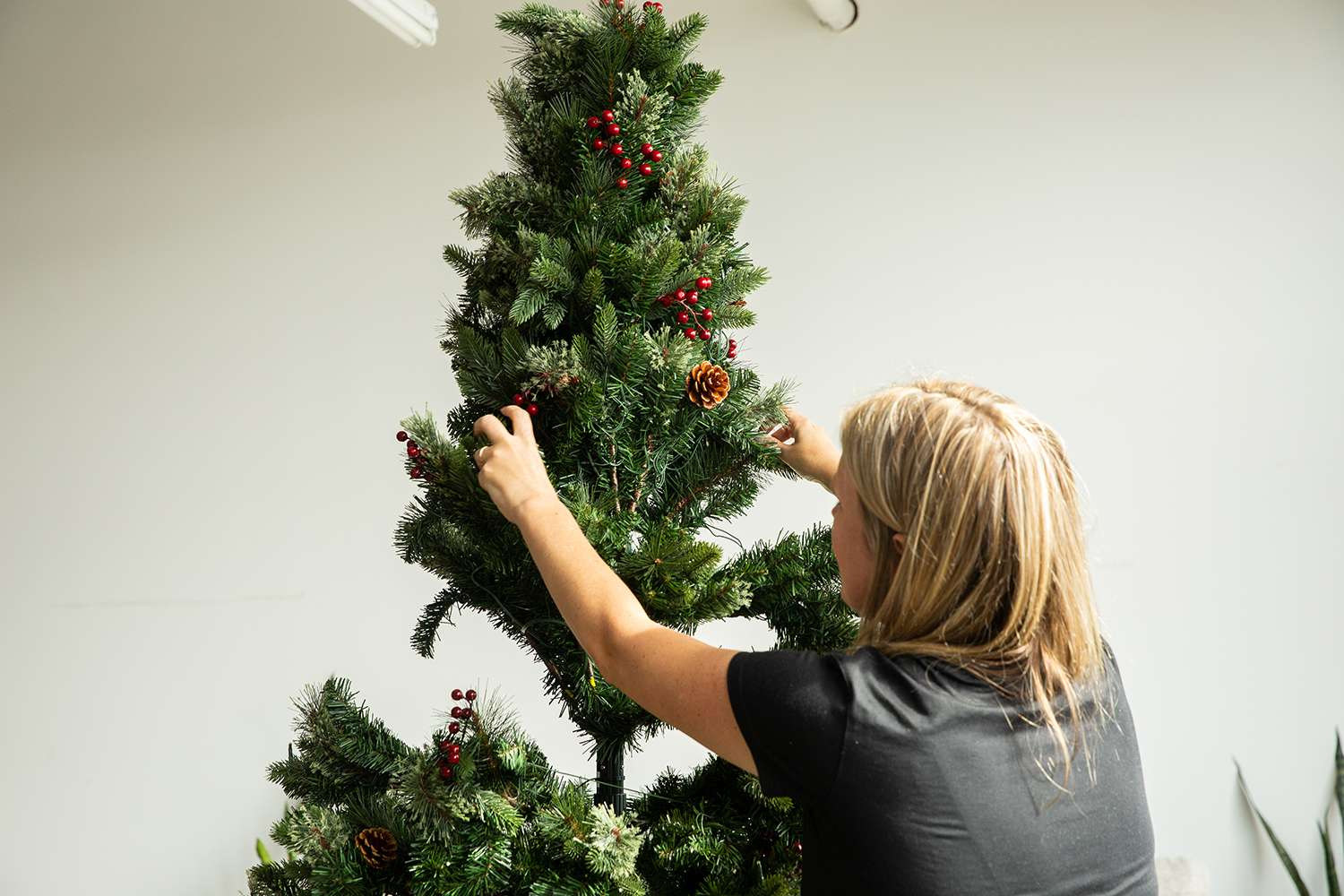assembling artificial christmas tree in lab