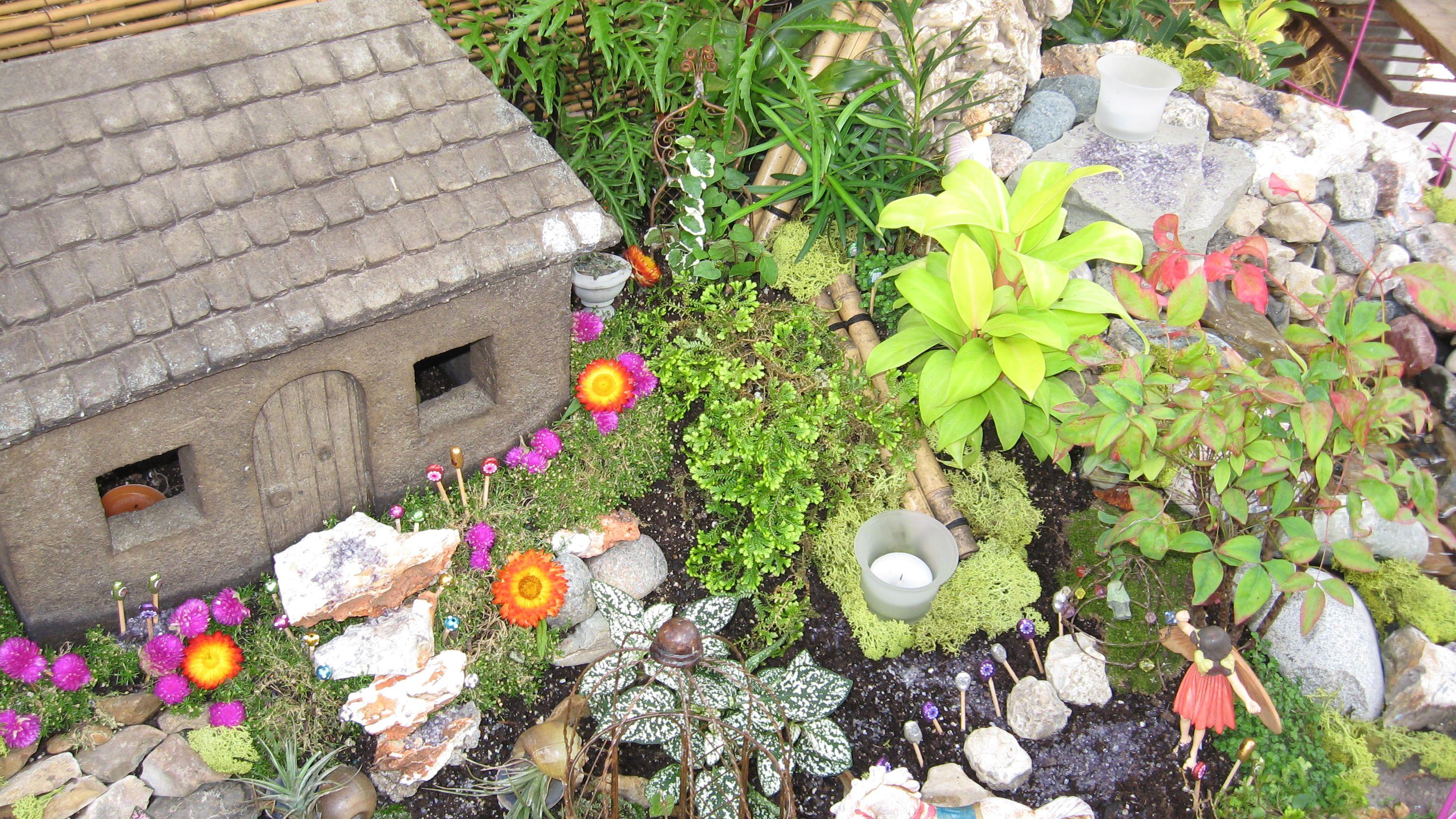 Ideas For A Fairy Garden