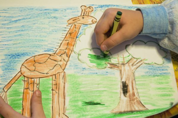 Kid coloring a picture of a tree and a giraffe.