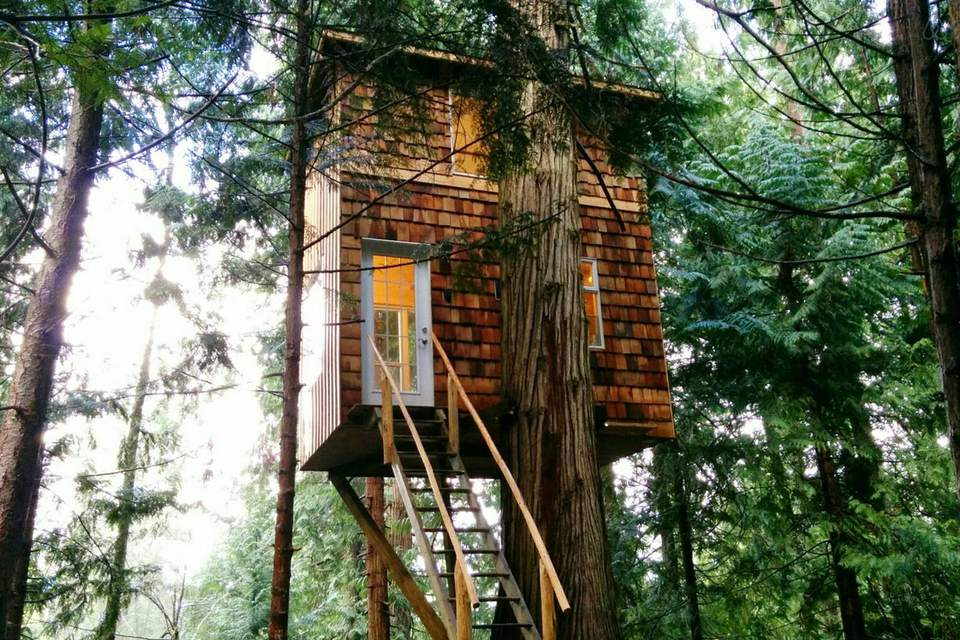 Tree Top Retreat