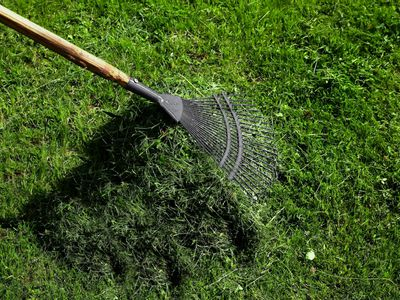 raking grass clippings