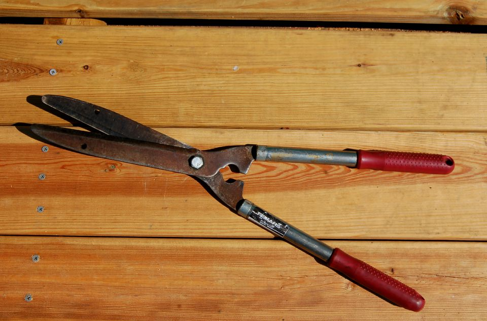 Picture of a pair of hedge shears.