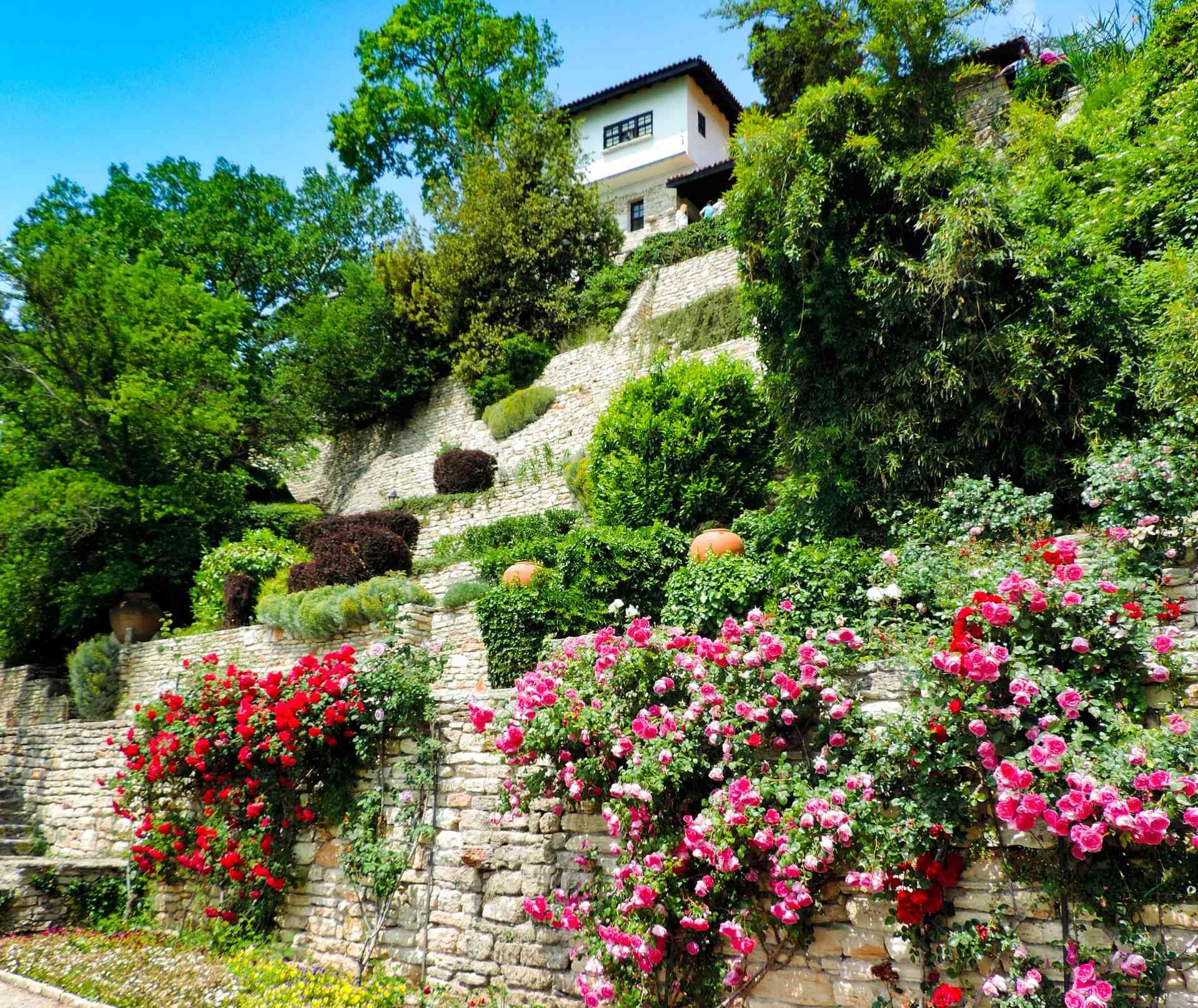 Multi-terraced, tall garden