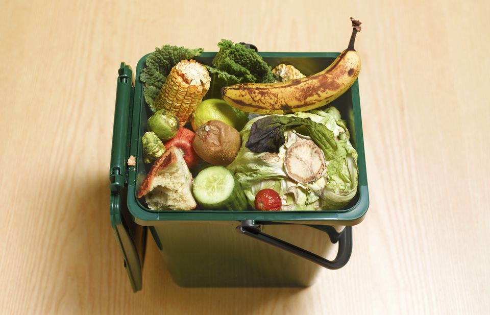 Food waste, including a banana, cucumber, corn, tomato, and lettuce in a recycling compost can.