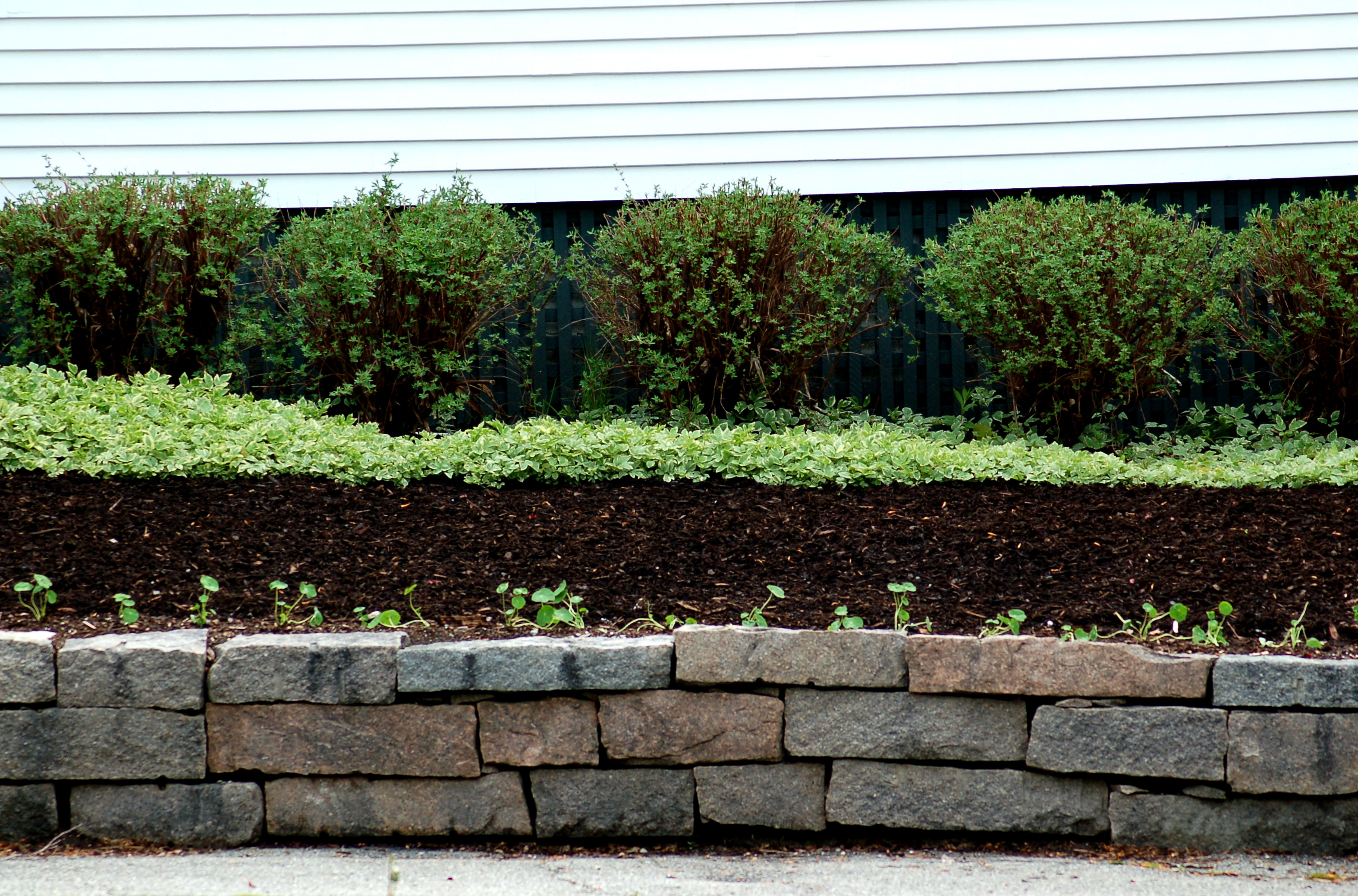 Is Dyed Mulch Safe to Use Here s e Type OK to Handle