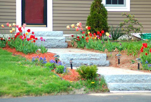 Foto de una pasarela de granito con plantas