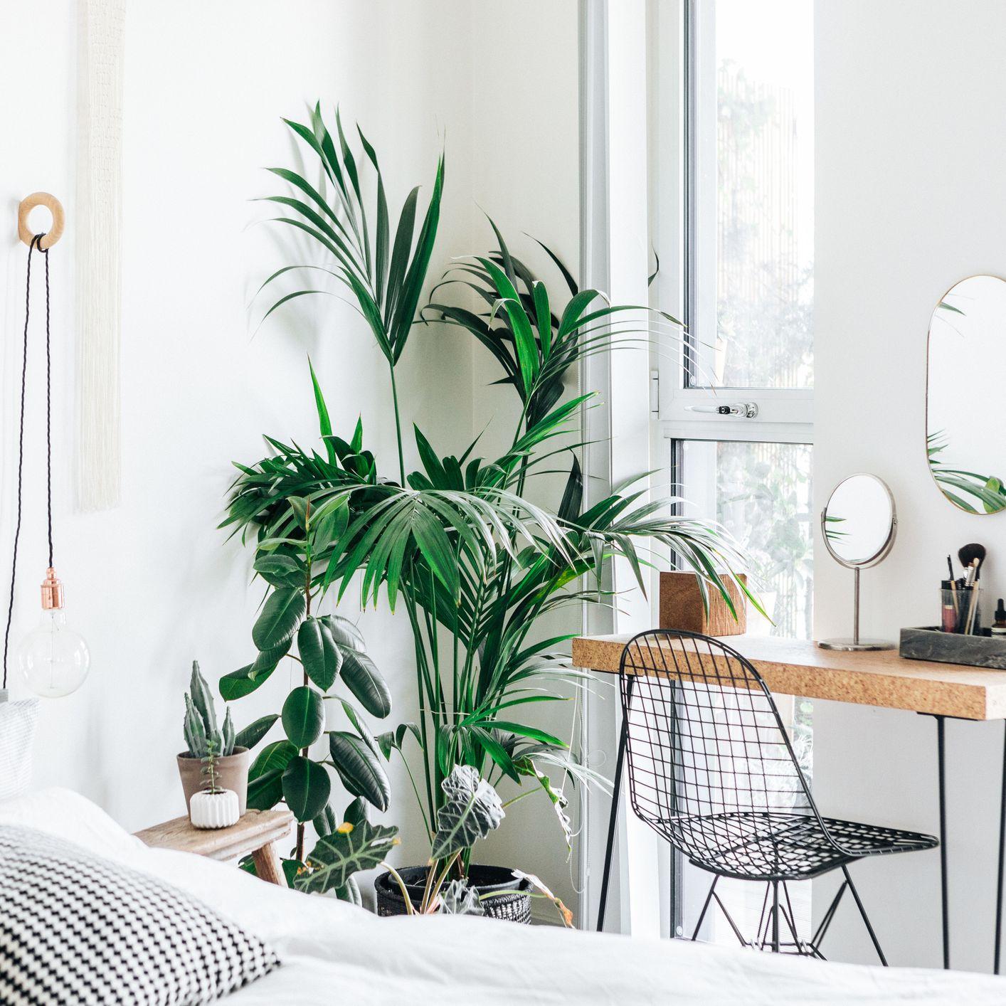 Top 10 Interior Design Instagram Accounts