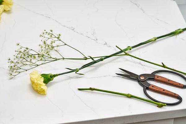 gardening scissors and flowers