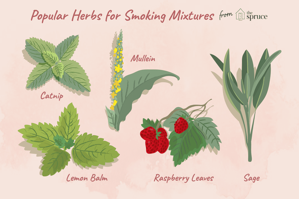 5 Herbs for Smoking Mixtures