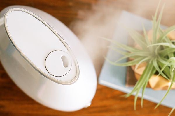 White portable humidifier releasing steam next to plant
