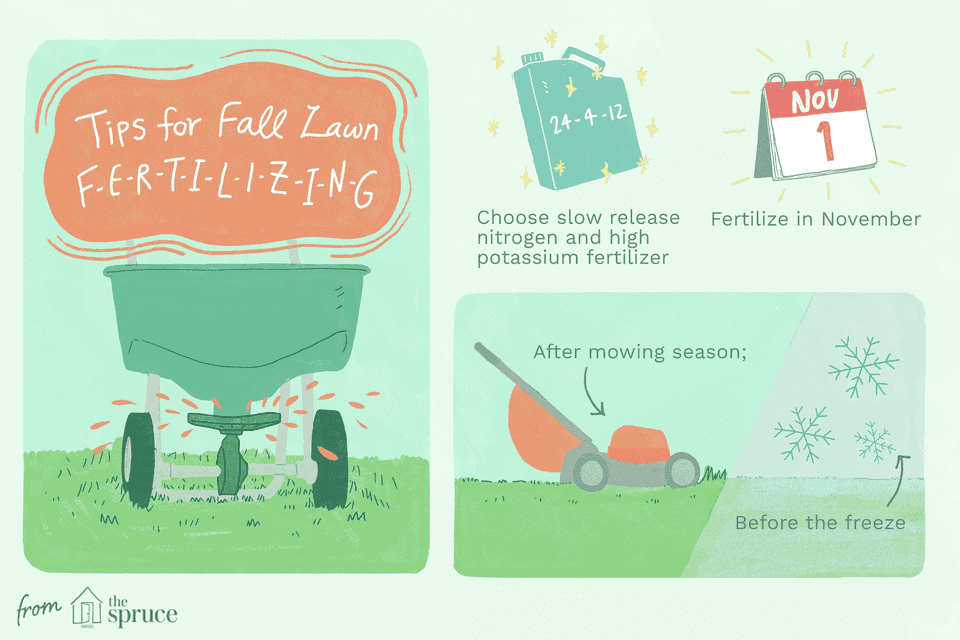 tips for late fall fertilizing