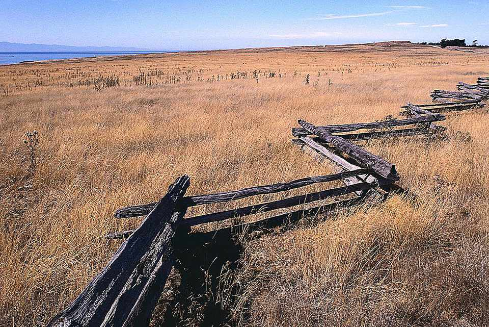 Zig-zag style wooden fence in a grassland environment