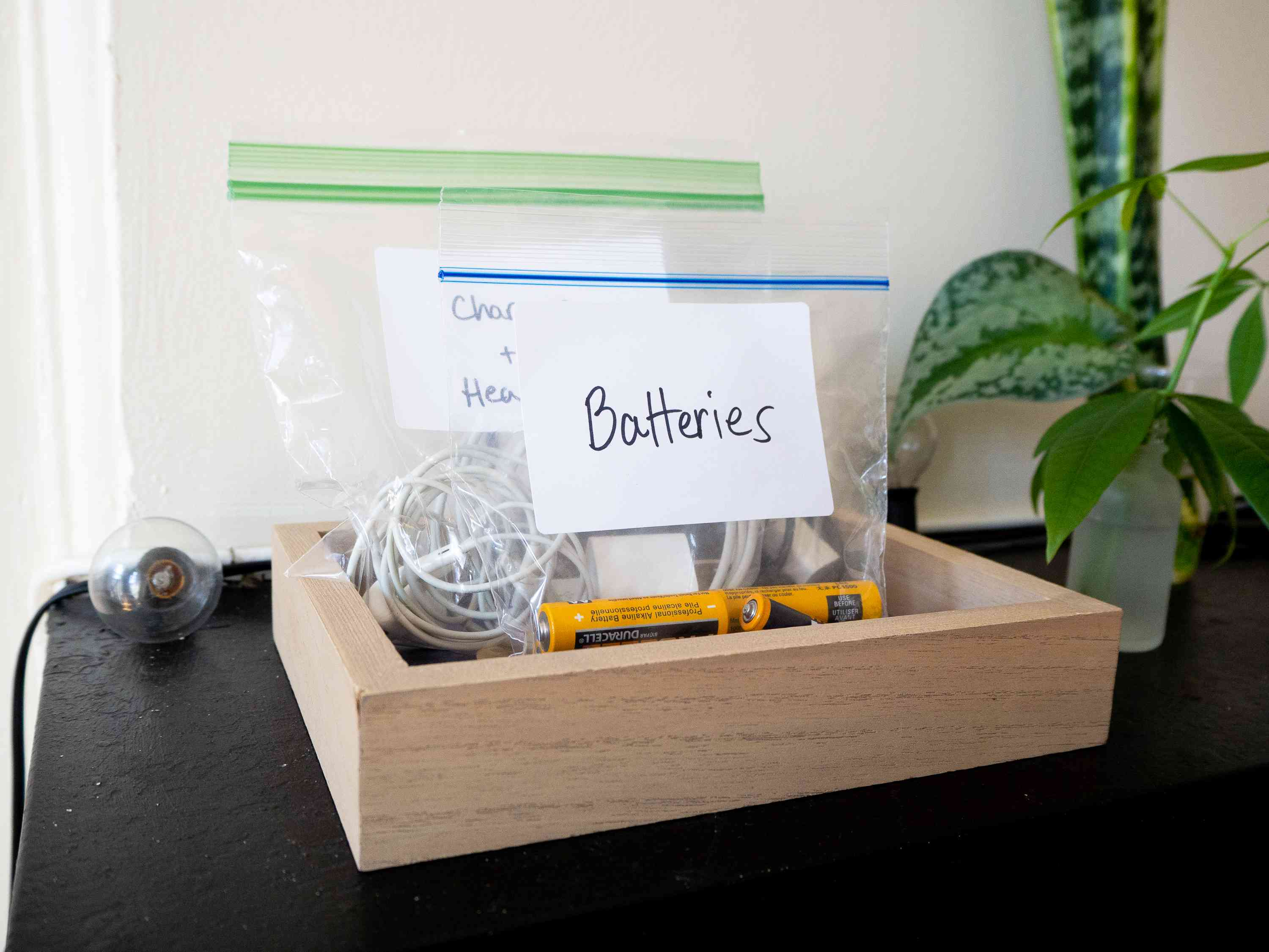 Batteries and chargers organized in small plastic bags next to houseplants
