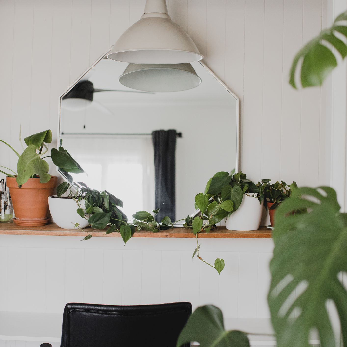 home office area with plants, mirror and light