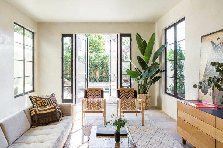 Habitación moderna con una espectacular planta de hojas de plátano