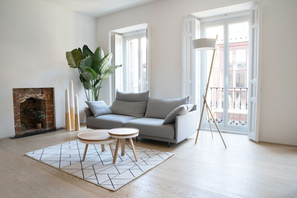 serene living room with large windows, plant, and gray sofa