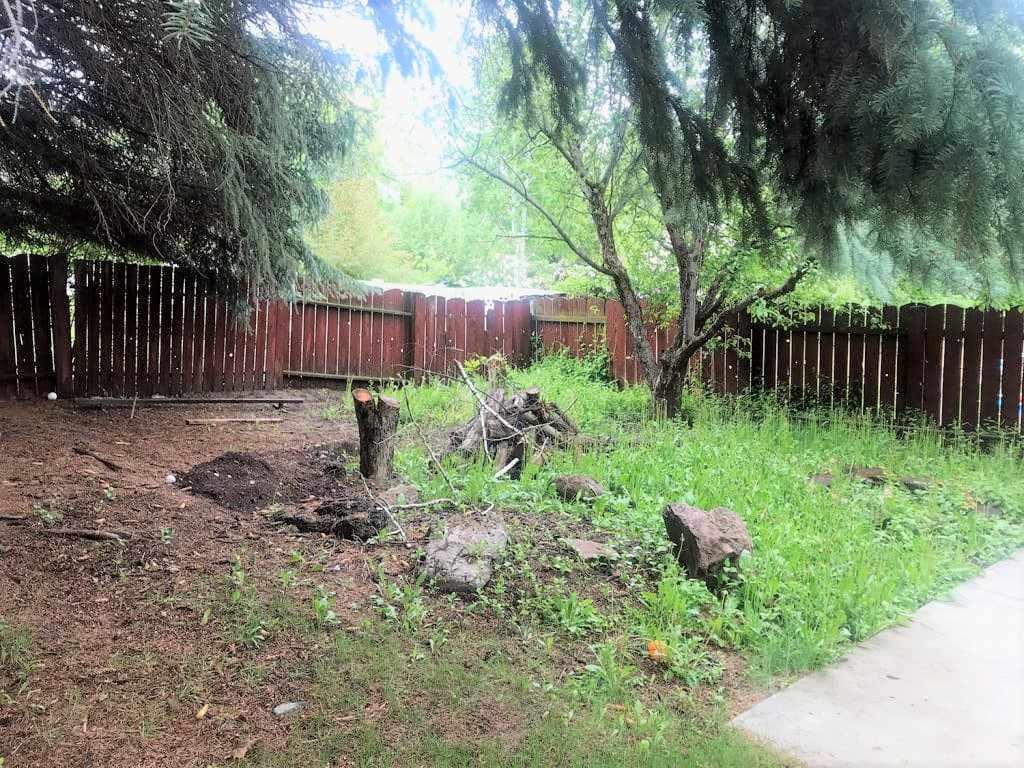Transformación de la chimenea del patio trasero - Antes