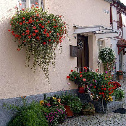 Jardín de flores de la ciudad