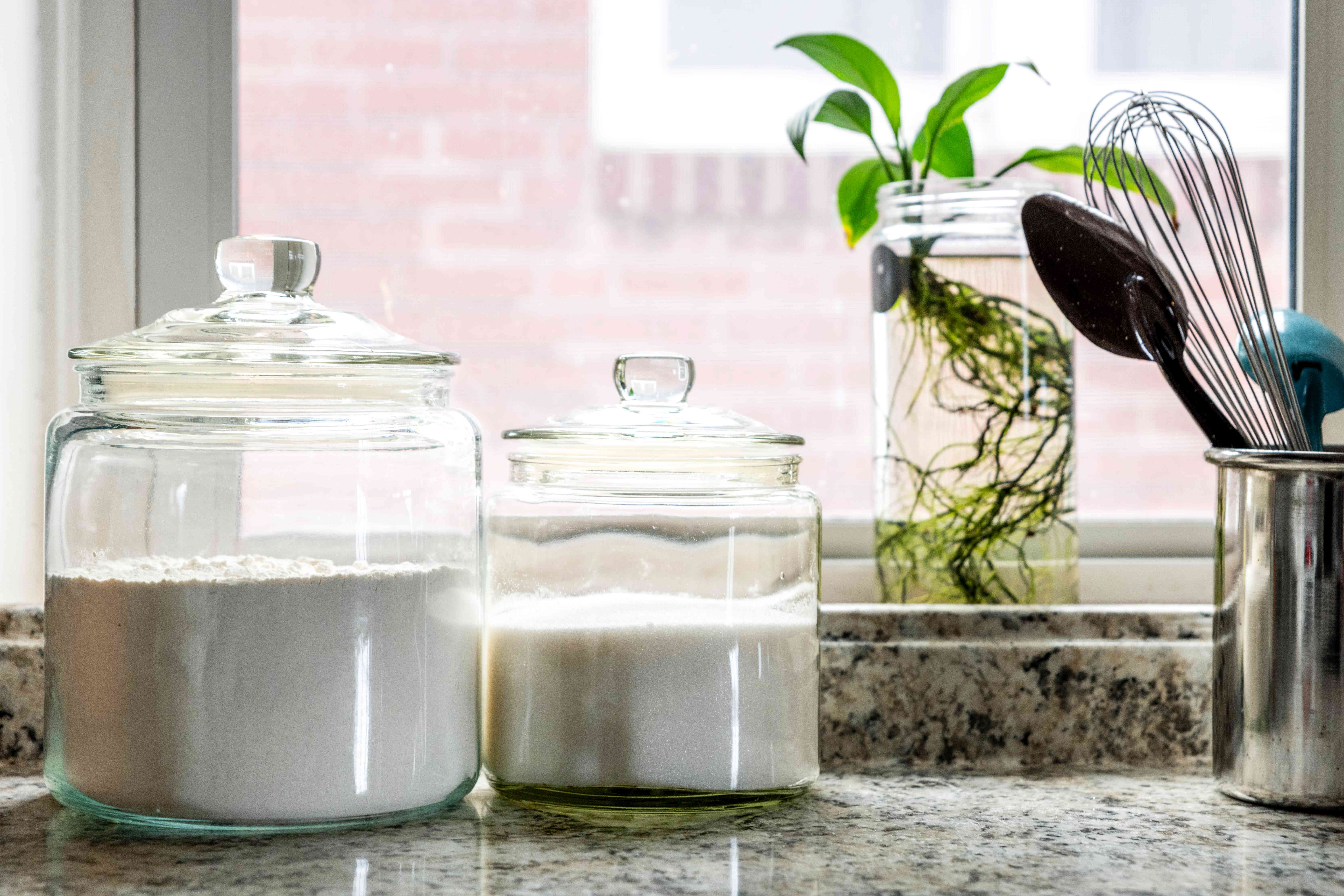 Flour and sugar sealed in glass containers on kitchen counter top with plant and utensils by window