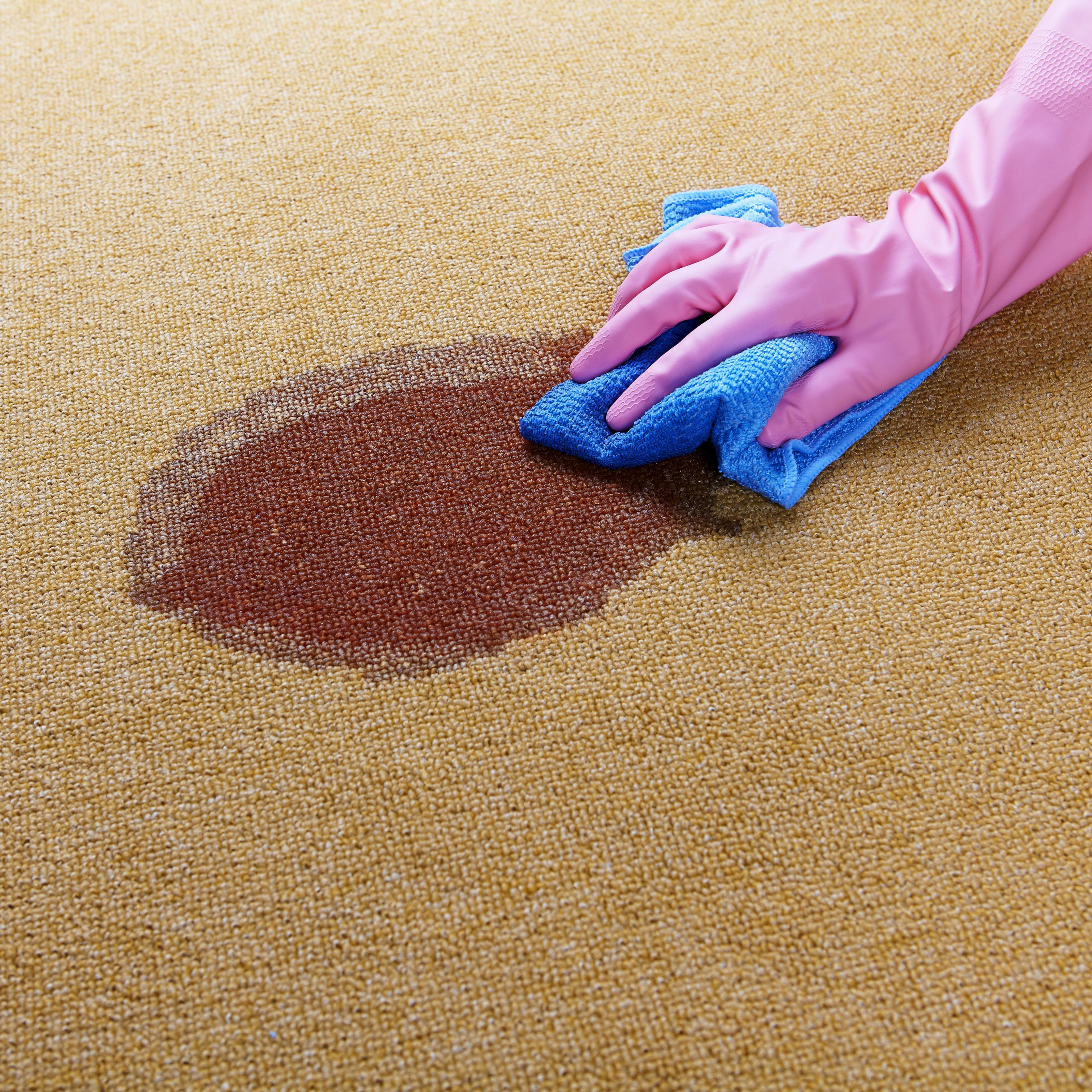 How to Remove Vomit Stains From Carpet