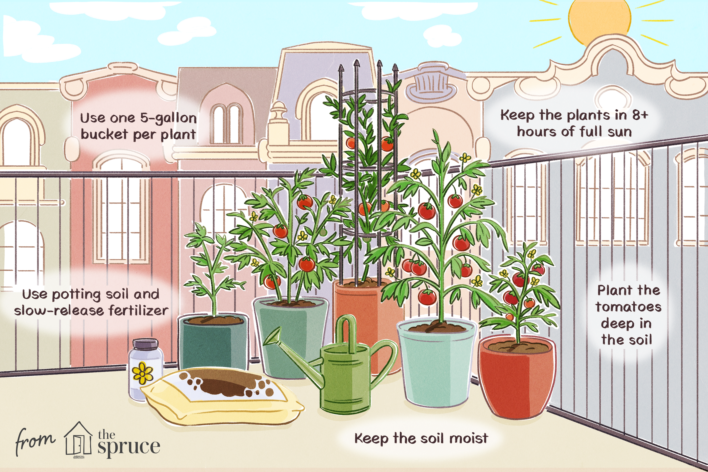 5 Tips For Growing Tomatoes In Containers