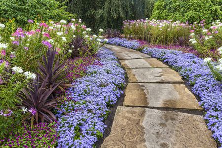 Drought Resistant Backyard Landscaping Ideas