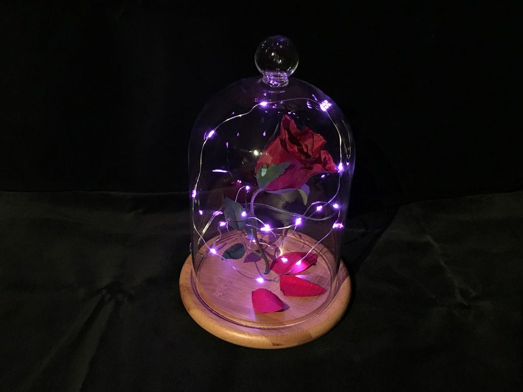 DIY Enchanted Rose Nightlight from Disney's Beauty and the Beast