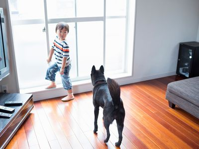 The Most Durable Floors You Can Install