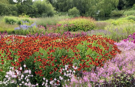 Large flower garden care large drifts of perennial flowers mightylinksfo