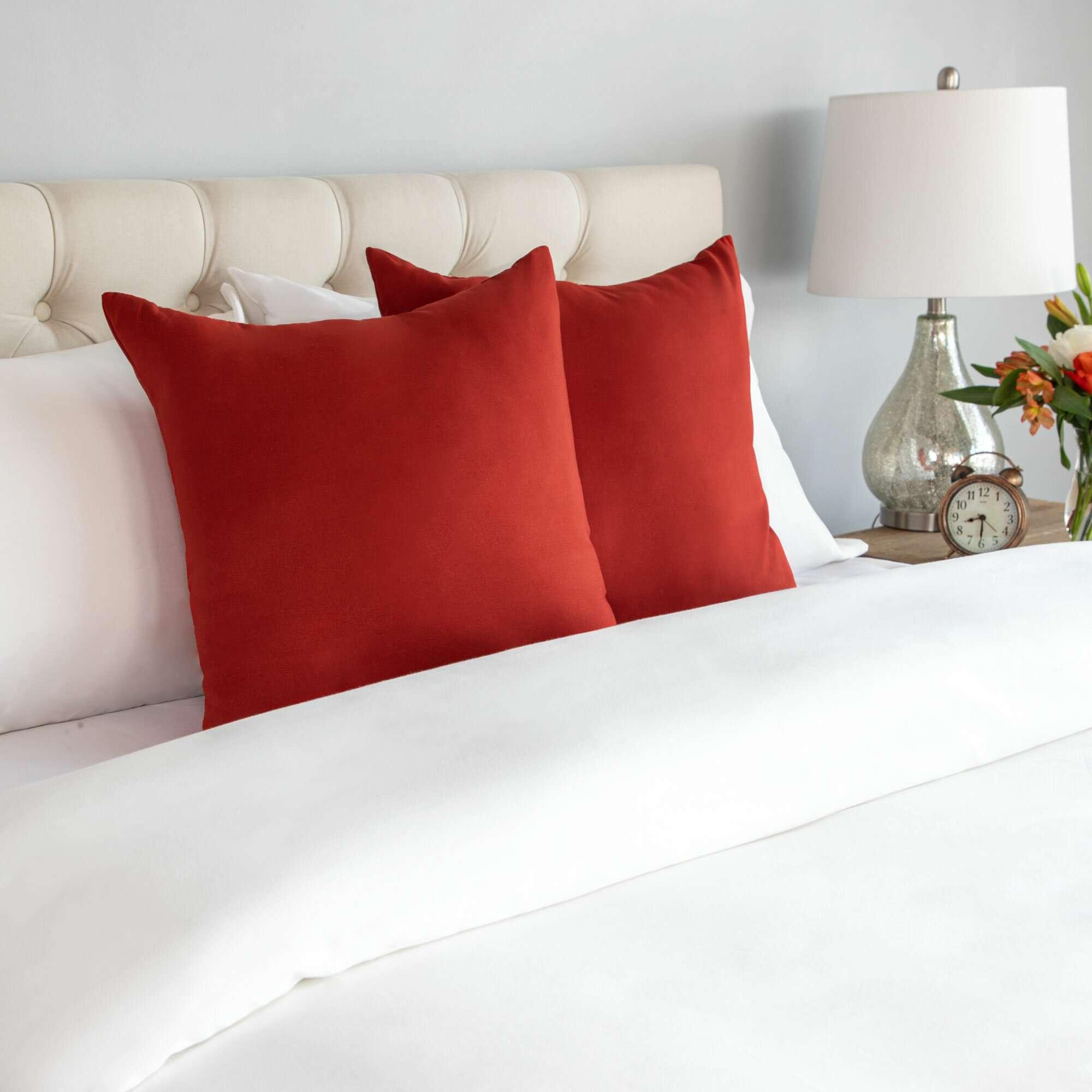 Wayfair Basics Square Throw Pillow, Set of 2