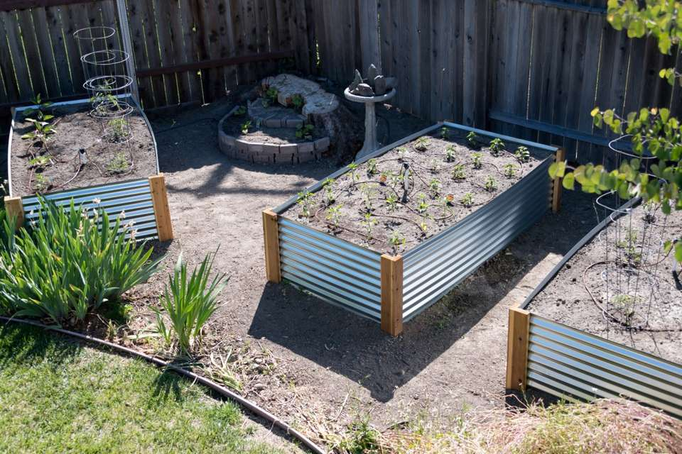 A trio of metal garden beds in a yard