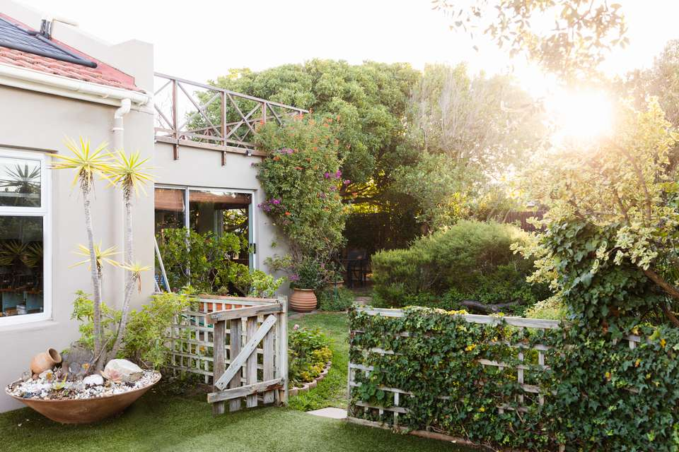 Backyard makeover with outdoor trees and foliage covering fences