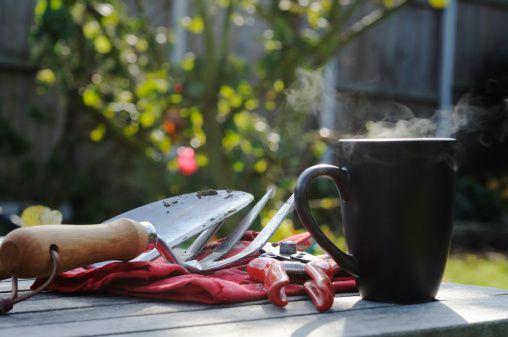 Use posos de café en el jardín de flores