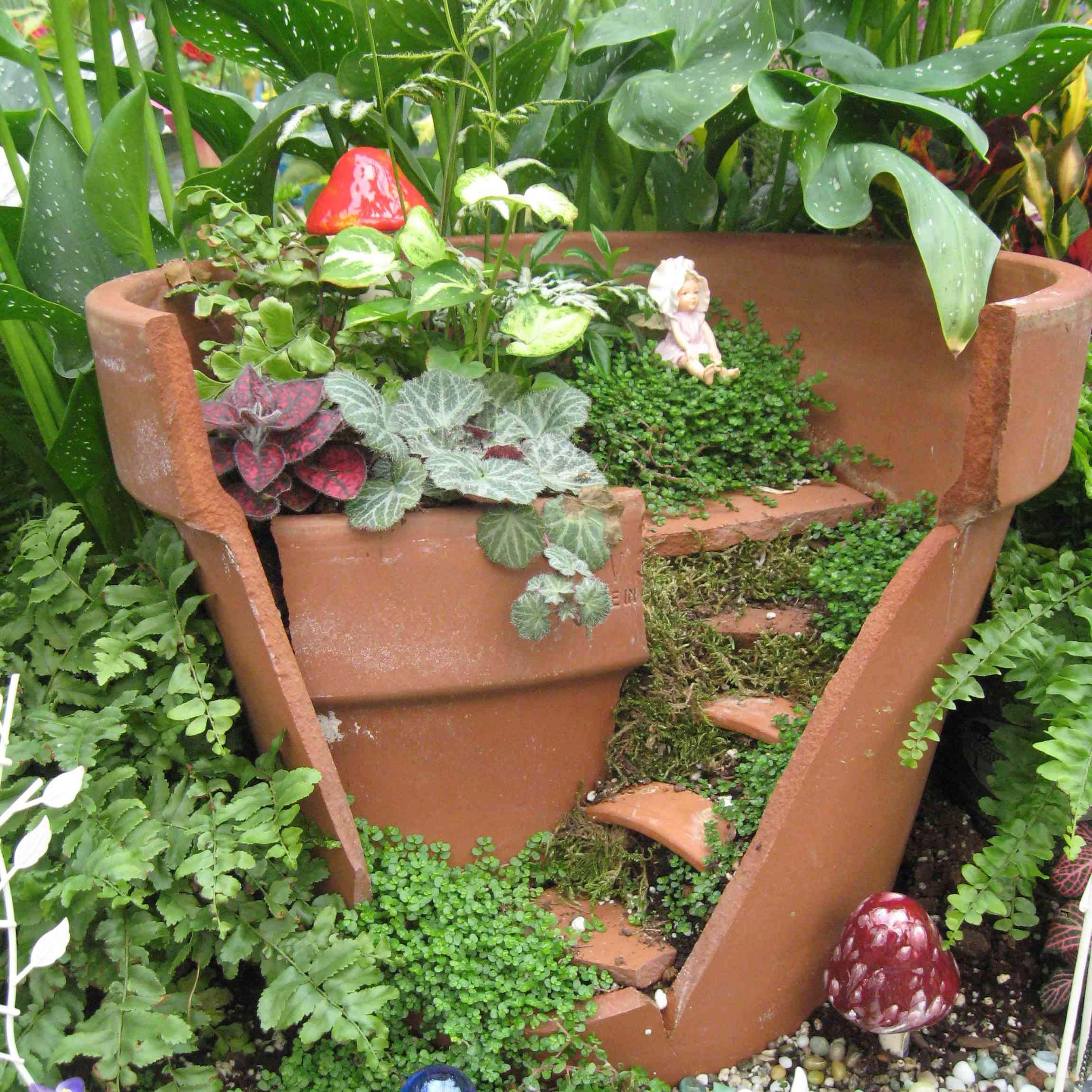 Broken terracotta pots made into fairy garden.