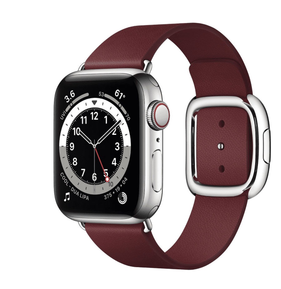 Apple Watch Series 6 Silver Stainless Steel Case with Modern Buckle