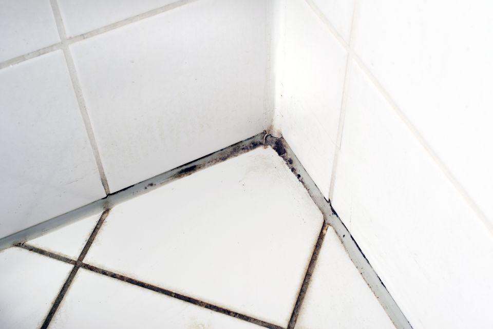 Mold on tiles