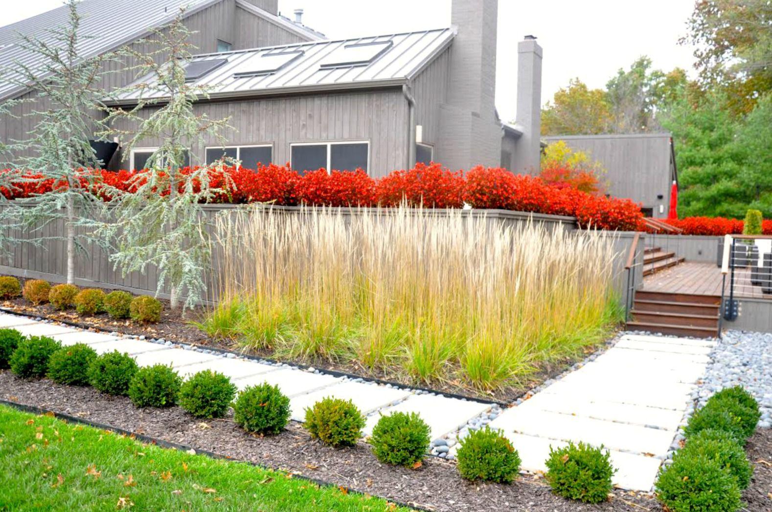 50 Backyard Landscaping Ideas