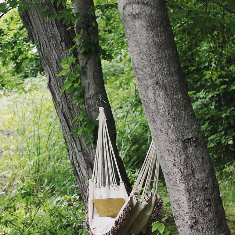 Hammock hanging from trees in woods.