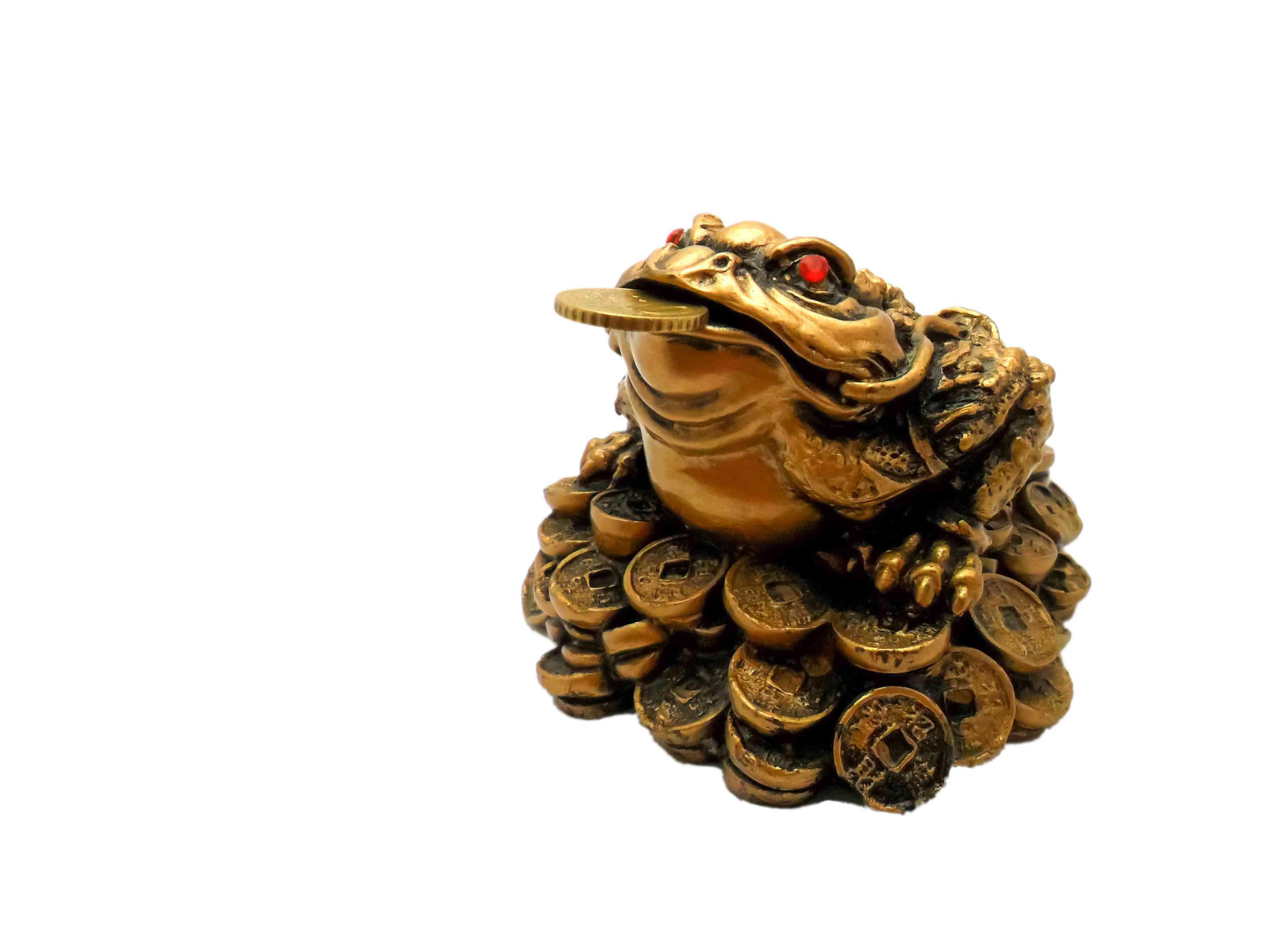 Three-legged toad, money frog, symbol of wealth on white background, isolated