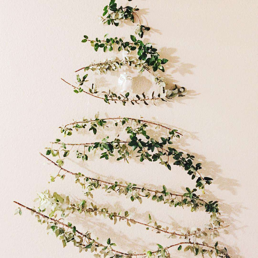 Tree branches hanging on wall